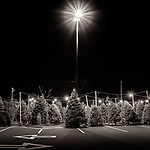 STAR LIGHT, STAR BRIGHT #monochrome #blackandwhite #wisconsin #midwestmemoir #christmastree