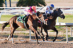 Jan 2011: Wilkinson and Garrett Gomez (1) win the Lecomte Stakes at the Fairgrounds in New Orleans, Louisiana.