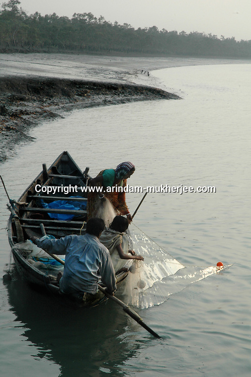 A family of fisherman catching fish in a river along the bank near the forest. Sunderban, West Bangal, India. Dec 2005. Arindam Mukherjee