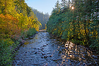 Sol Duc River on Merrill Ring property.  Olympic Peninsula, Washington.  Sept. Sunrise.  This photo taken from second bridge (Forest Service).