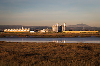 The Russell City Energy Center, a gas-fired power plant adjacent to the Hayward Marsh along San Francisco Bay.  In the background is an East Bay landmark, Mount Diablo.