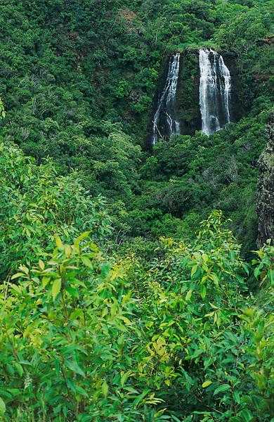 Opeaka'a Falls, Kauai, Hawaii, USA