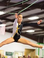 Texas Power Athletics TNT