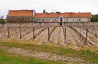 winery building vineyard chateau la garde pessac leognan graves bordeaux france