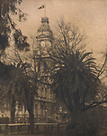 Clock Tower and Trees<br /> Cyanotype + Coffee toning