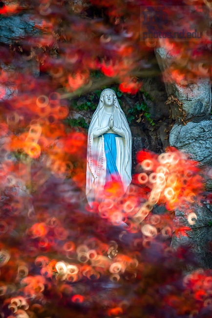 June 25, 2020; Mary statue at the Grotto (Photo by Matt Cashore/University of Notre Dame)