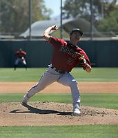 Connor Grammes - Arizona Diamondbacks 2021 spring training (Bill Mitchell)