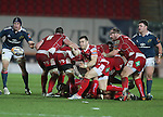 Scarlets scrum half Gareth Davies whips the ball away from the breakdown.<br /> Celtic League<br /> Scarlets v Munster<br /> <br /> 01.03.14<br /> <br /> ©Steve Pope-SPORTINGWALES