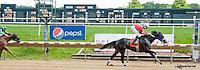 Banner Elk Lady winning at Delaware Park on 6/19/13