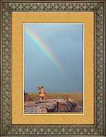 """Image Size:  16"""" x 24""""<br /> Finished Frame Dimensions:  27"""" x 35""""<br /> Quantity Available: 1"""
