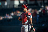 Surprise Saguaros catcher Jeremy Martinez (4), of the St. Louis Cardinals organization, during an Arizona Fall League game against the Mesa Solar Sox at Sloan Park on November 15, 2018 in Mesa, Arizona. Mesa defeated Surprise 11-10. (Zachary Lucy/Four Seam Images)