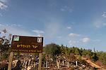 Israel, Jerusalem Mountains. Memorial for the Fallen forest on Mount Eitan