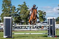 NZL-Aleisha Bradly rides Caprio. Class 21: Mainland Coachwork Junior Rider Series Sponsored by ZEALANDIA NURSURIES. 2021 NZL-Auckland Veterinary Centre Brookby SJ Grand Prix Show. Papatoetoe, Auckland. Sunday 14 February. Copyright Photo: Libby Law Photography