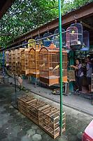 Yogyakarta, Java, Indonesia.  Caged Birds for Sale in the Bird Market.
