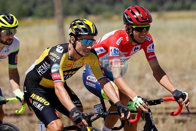 Race leader Red Jersey Rein Taaramäe (EST) Intermarché-Wanty-Gobert Matériaux chats with Primoz Roglic (SLO) Jumbo-Visma during Stage 4 of La Vuelta d'Espana 2021, running 163.9km from Burgo de Osma to Molina de Aragon, Spain. 17th August 2021.    <br /> Picture: Luis Angel Gomez/Photogomezsport   Cyclefile<br /> <br /> All photos usage must carry mandatory copyright credit (© Cyclefile   Luis Angel Gomez/Photogomezsport)