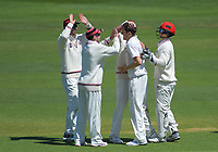 Canterbury's Will Williams celebrates dismissing Wellington's Tom Blundell during day one of the Plunket Shield cricket match between the Wellington Firebirds and Canterbury at Basin Reserve in Wellington, New Zealand on Tuesday, 29 October 2019. Photo: Dave Lintott / lintottphoto.co.nz