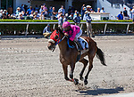 March 27, 2021: Eye of a Jedi #2, ridden by jockey Javier Castellano, wins the Ghostzapper Stakes (Grade 3) on Florida Derby Day at Gulfstream Park in Hallandale Beach, Florida. Liz Lamont/Eclipse Sportswire/CSM