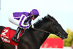 03.09.2011 The Irish Champion Stakes from Leopardstown. .The Aidan O'Brien trained So You Think ridden by Seamus (Seamie) (J A) Heffernan win the Group 1 Red Mills Irish Champion Stakes