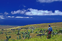 Biker looking out over the Big Island's varied and unusual landscape