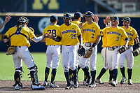 Michigan Wolverines players, including Johnny Slater (25), Miles Lewis (2), Jonathan Engelmann (3), and Michael Brdar (9), celebrate defeating the Illinois Fighting Illini in the NCAA baseball game on April 8, 2017 at Ray Fisher Stadium in Ann Arbor, Michigan. Michigan defeated Illinois 7-0. (Andrew Woolley/Four Seam Images)
