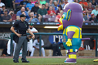 Zerk! Jr. has some fun with home plate umpire Steven Hodgins between innings of the Midwest League game between the Bowling Green Hot Rods and the Dayton Dragons at Fifth Third Field on June 9, 2018 in Dayton, Ohio. The Hot Rods defeated the Dragons 1-0.  (Brian Westerholt/Four Seam Images)