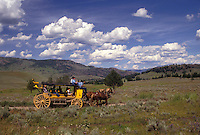 AJ3563, stage coach, Yellowstone National Park, Wyoming, Yellowstone, A yellow stage coach rides through the scenic countryside of Yellowstone National Park at Tower-Roosevelt in the state of Wyoming.