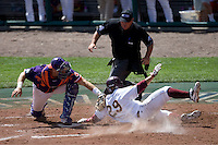 Clemson's Spencer Kieboom tries to tag out Arizona State's Raoul Torrez in Game 4 of the NCAA Division One Men's College World Series on Monday June 21st, 2010 at Johnny Rosenblatt Stadium in Omaha, Nebraska.  (Photo by Andrew Woolley / Four Seam Images)