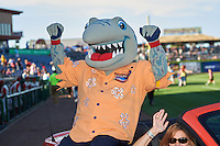 Clearwater Threshers mascot Phinley before a game against the Dunedin Blue Jays on April 8, 2016 at Bright House Field in Clearwater, Florida.  Dunedin defeated Clearwater 8-3.  (Mike Janes/Four Seam Images)
