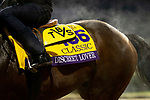 October 30, 2018 : Discreet Lover, trained by Uriah St. Lewis, exercises in preparation for the Breeders' Cup Classic at Churchill Downs on October 30, 2018 in Louisville, Kentucky. Carolyn Simancik/Eclipse Sportswire/CSM