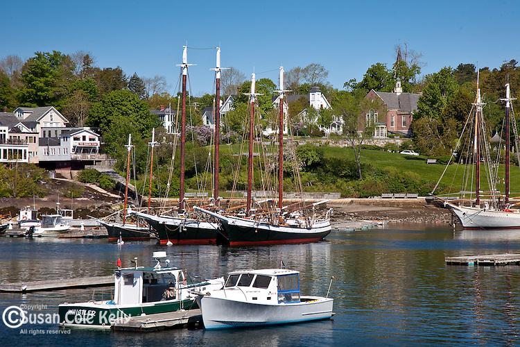 Schooners in Camden Harbor  in Camden, ME, USA
