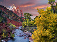 Virgin River and Three Patriarchs. Zion National Park, Utah.