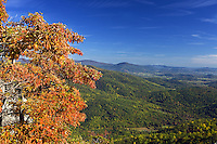 View of the Shenandoah Valley with fall colors against blue sky from Old Rag Mountain in Madison County, VA. Photo/ Andrew Shurtleff