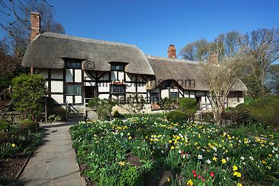 United Kingdom, England, Warwickshire, Stratford-upon-Avon: Garden and front of Anne Hathaways cottage, wife of William Shakespeare