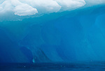 Alaska, Iceberg detail, turquoise color of thousands of years old glacial ice, Prince William Sound, United States, North America,.