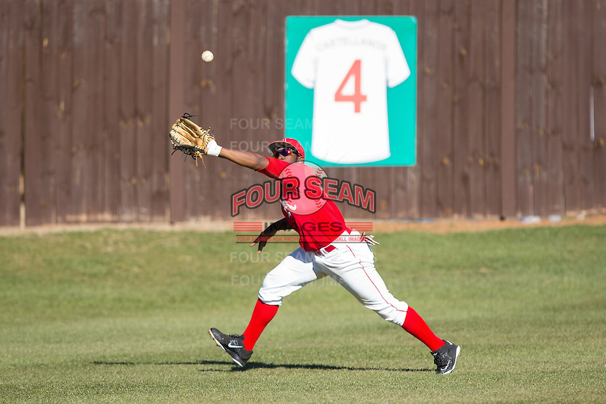 Belmont Abbey Crusaders left fielder Levi Wright (11) makes a running catch against the Shippensburg Raiders at Abbey Yard on February 8, 2015 in Belmont, North Carolina.  The Raiders defeated the Crusaders 14-0.  (Brian Westerholt/Four Seam Images)