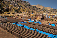 Freshly molded bricks are seen drying on the sun at a brick factory in the outskirts of Puno, Peru, 6 August 2012. Child labour is a common practice at the artisanal brick factories, found predominantly in socially deprived areas of the urban zones. Poverty and lack of employment force parents, mainly season workers coming from rural areas of the country, to employ their own children, in an effort to ensure the livelihood for the whole family. Children aged 4-7 take part in simple jobs while children aged 8 and up tend to work regularly, same as adults. A family group, consisting of 2 adults and 2-3 children, may earn 20-25 USD per day, working almost the whole day, often in harsh climatic conditions.