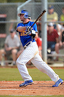 South Dakota State Jackrabbits catcher Steven Autenrieth #24 during a game against the Ohio State Buckeyes at North Charlotte Regional Park on February 23, 2013 in Port Charlotte, Florida.  Ohio State defeated South Dakota State 5-2.  (Mike Janes/Four Seam Images)