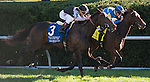 October 10, 2015: Her Emmynency and jockey Florent Geroux winning the 32nd running of the Queen Elizabeth II Challenge Cup (Grade 1) $500,000 at Keeneland in Lexington, Kentucky for trainer Michael Stidham and owner Dawn and Ike Thrash.Samantha Bussanich/ESW/Cal Sport Media