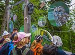 Deutschland, Bayern, Niederbayern, Nationalpark Bayerischer Wald, Neuschoenau: laengster Baumwipfelpfad der Welt mit Aussichtsplattform in 44 m Hoehe auf dem Baumturm, Schulklasse | Germany, Bavaria, Lower-Bavaria, National Park Bavarian Forest, Neuschoenau: longest tree-top walk in the world with view-platform at the tree-tower in 44 m height, visiting school kids