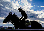 October 2, 2020: Liveyourbeastlife returns to the barn just after sunrise as rain clouds start to break while horses prepare for Preakness Stakes Week races at Pimlico Race Course in Baltimore, Maryland. Scott Serio/Eclipse Sportswire/CSM