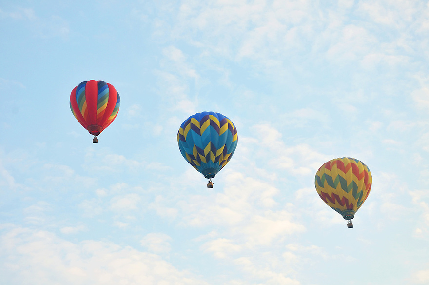 A nice grouping of beautifully colored balloons against the pale morning sky.