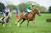Middleburg Spring Races - 4/23/11 - COMPLETE GALLERY