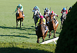 October 16, 2021: Shantisara (IRE) #3, ridden by jockey Flavien Prat wins the Queen Elizabeth II Challenge Cup Stakes (Grade 1) on the turf at Keeneland Racecourse in Lexington, KY on October 16, 2021.  Candice Chavez/ESW/CSM