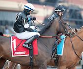 Excelsior Stakes - Kid Cruz