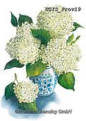 Ingrid, FLOWERS, BLUMEN, FLORES, paintings+++++,USISPROV19,#f#, EVERYDAY