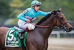 ELMONT, NY - OCTOBER 08: Irad Ortiz Jr., congratulating Lady Eli #5, after winning the 39th Running of The Flower Bowl, on Jockey Club Gold Cup Day at Belmont Park on October 8, 2016 in Elmont, New York. (Photo by Douglas DeFelice/Eclipse Sportswire/Getty Images)