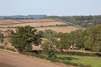 14.9.2020 Farmland in Rutland <br /> ©Tim Scrivener Photographer 07850 303986<br />      ....Covering Agriculture In The UK.