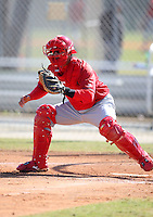 March 19, 2010:  Catcher Roberto Espinoza of the St. Louis Cardinals organization during Spring Training at the Roger Dean Stadium Complex in Jupiter, FL.  Photo By Mike Janes/Four Seam Images