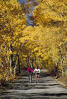 Women (MR) mountain biking in the Fall, Boreas Pass, Summit County, CO. Summit County, Colorado.
