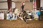SEBRA - Chatham, VA - 4.17.2015 - Bulls & Action